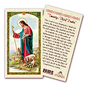 Holy Card-Good Shepherd