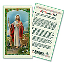Holy Card-Good Shepherd-Nicene Creed